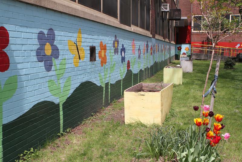 School Yard Flowers