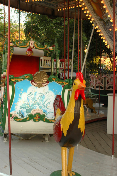 Skinny rooster on carousel
