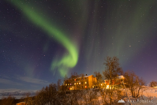 Northern lights over our hotel in Abisko