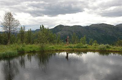 Harahorn, Noorwegen.