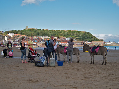 Donkeys and Scarborough Castle on the hill behind.