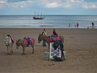 Donkeys on the beach and the Hispaniola on the sea. The Hispaniola used to take people to Treasure Island on Scarborough Mere.