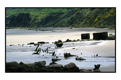 Cayton Bay 2004