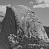 Half Dome Closeup B&W