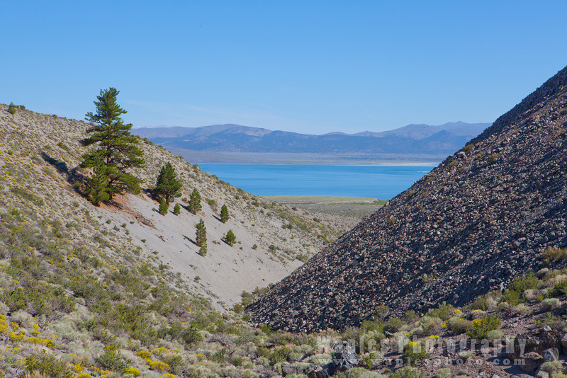 Mono Lake and Flank of Parnum Crater