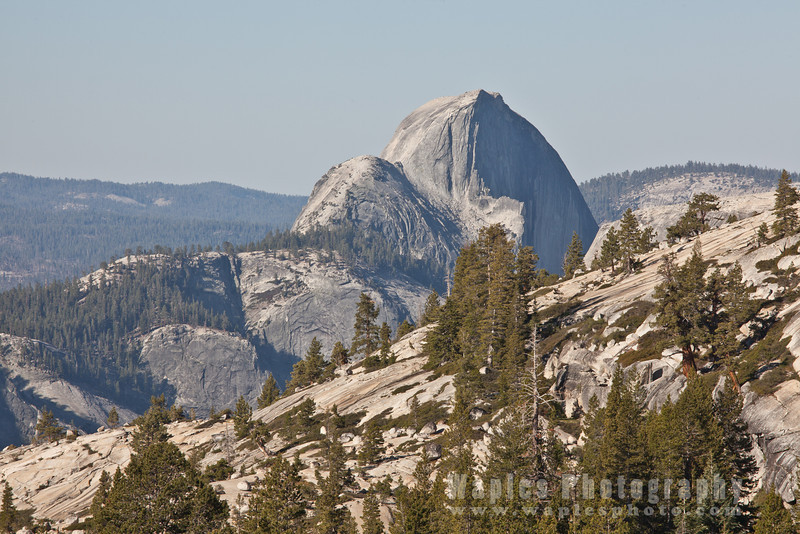 Half Dome as Seen from Olmsted Point