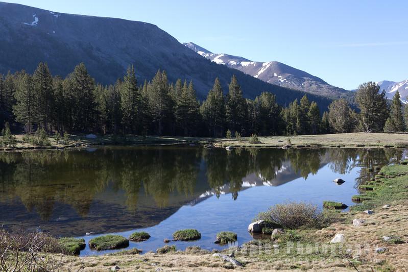 Mountain in Reflection, Along Tioga Pass Road, YNP