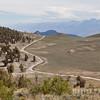 White Mountain Road & the Sierra Nevadas