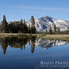 Mirror Reflection, Ellery Lake, Along Tioga Pass Road, YNP