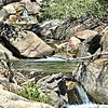 Soda Creek (Nevada side of pass)