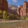 Virgin River near Big Bend<br /> Zion National Park