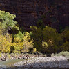 Virgin River near The Temple of Sinawava<br /> Zion National Park