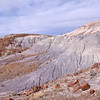 Colours abound <br /> Petrified Forest National Park