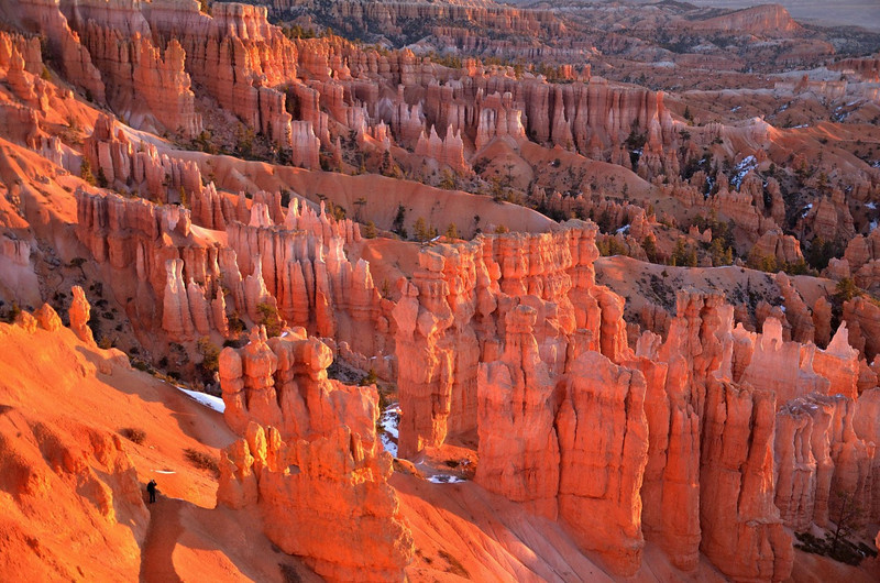 Sunrise lights  the hoodooos in the amphitheatre<br /> Bryce Canyon NP<br /> Utah