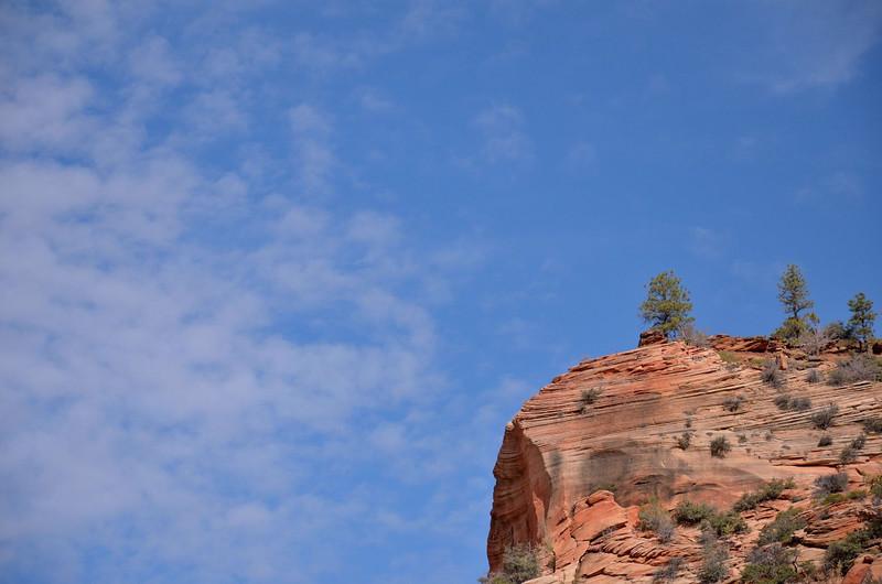 Zion - Mount Carmel Highway<br /> Zion National Park<br /> Utah
