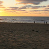 Seagulls, having a rest on the beach..