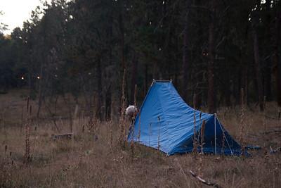 Quint's tent