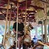 Steve. Congress Park Carousel