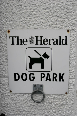 I love this hook-up for dogs!