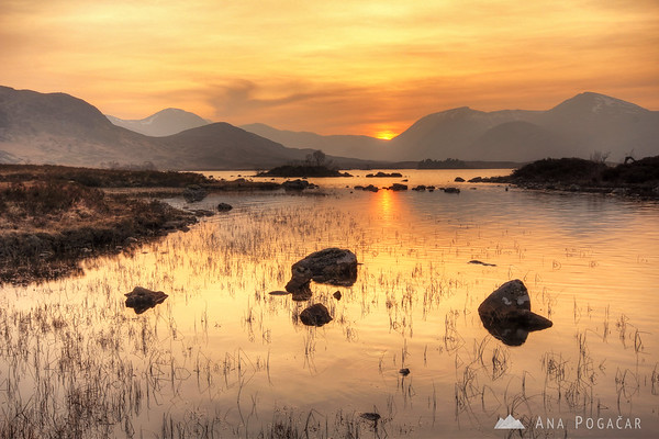 Rannoch Moor at sunset