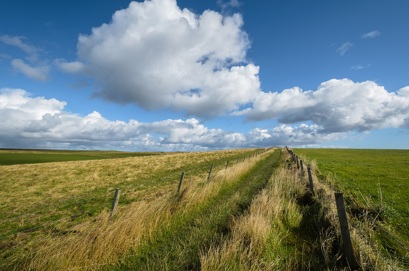 The path to the Tomb of Eagles, Orkney Islands - a Neolithic burial site.