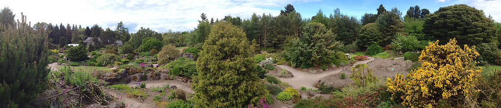 A panoramic view from within the Edinburgh botanic garden