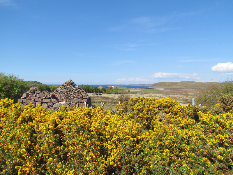 Our target was the headland on the right-hand side   Note the old crofter's cottage behind the gorse