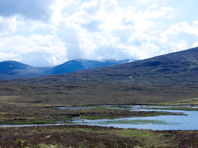 Into the West on the road from Inverness to Wester Ross we see snow still on the mountains in the first week of June