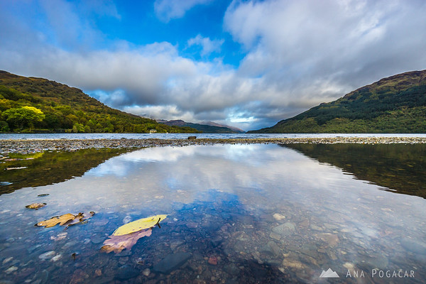 Reflection in a puddle at Loch Lomond