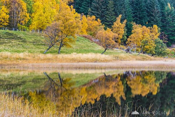 Fall reflections at Fuaran na Fenne Lake