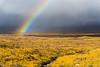 Rainbow at Rannoch Moor, Glencoe