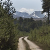 Track to the hills, Cairngorms.
