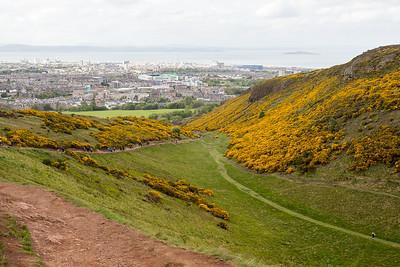 Scotland 7