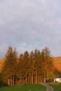ScotlandSpring2020-03955