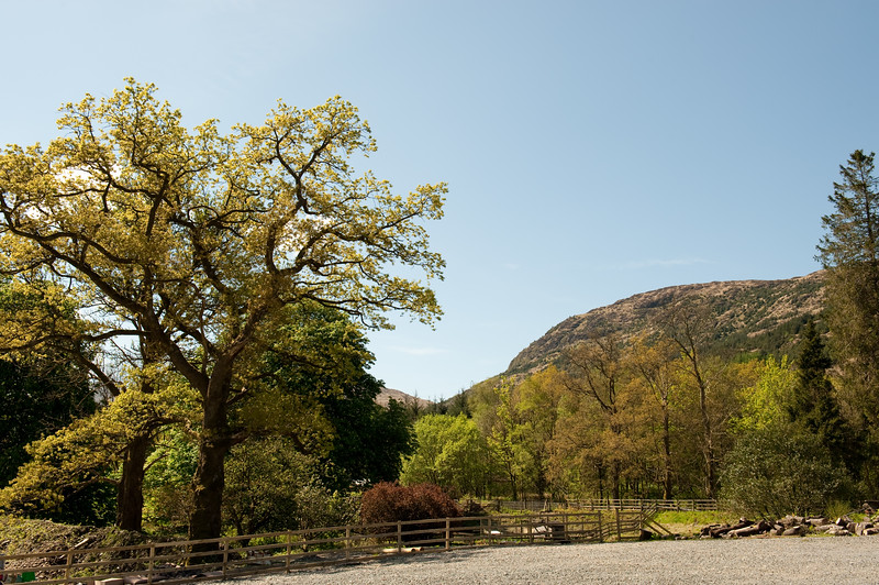 The hills around Loch Lomond.