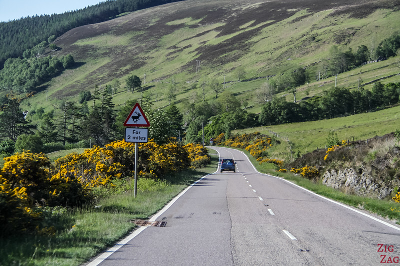 Driving in Scotland 2