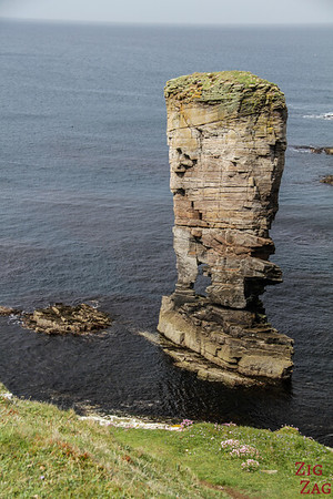 Yesnaby Castle sea stack Orkney 6