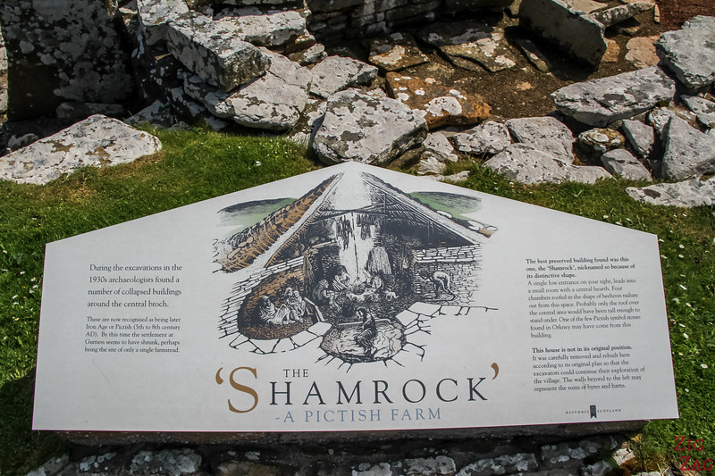 'Shamrock' Pictish Farm 1