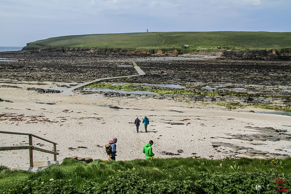 Things to do in Orkney -  Brough of Birsay