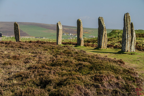 The Ring of Brodgar Orkney  - the stones 3