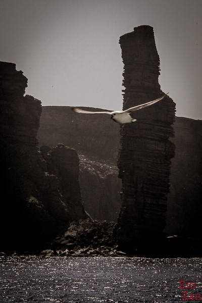 the old man of Hoy Orkney islands 3