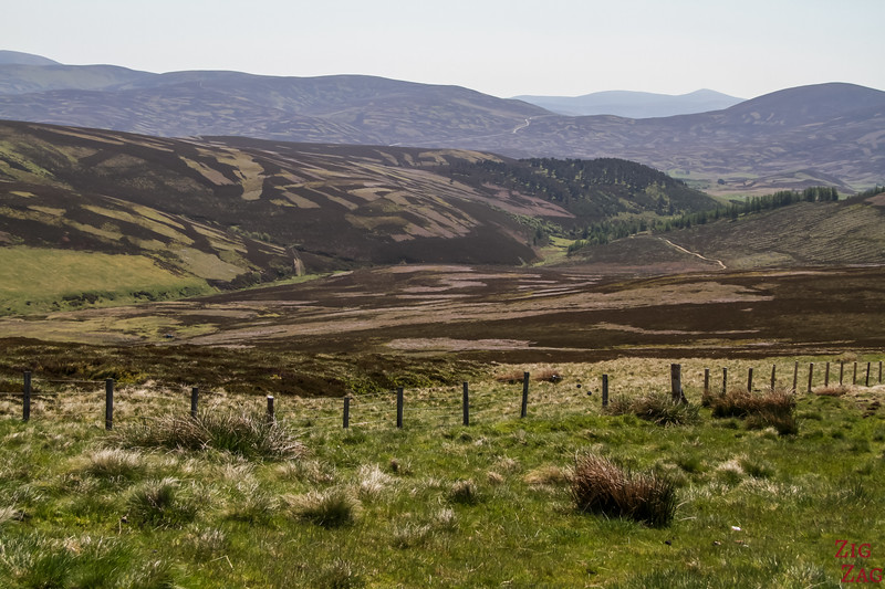 Upland Plateau Cairngorms National Park Scotland 1