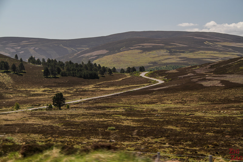 Upland Plateau Cairngorms National Park Scotland 6
