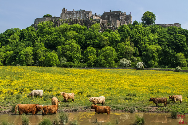 Famous Scottish Castles - Stirling Castle