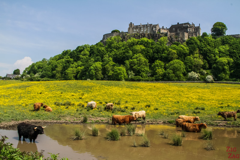 Scotland images - Stirling Castle
