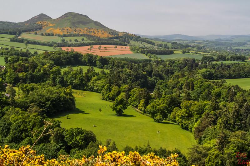Scott's view Scotland 2