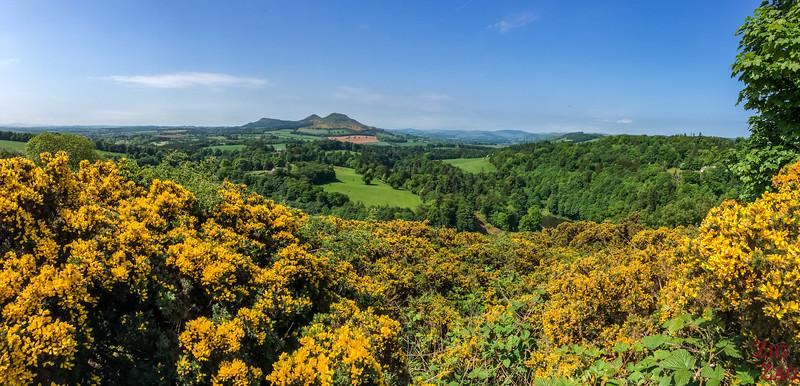 Scott's view Scotland 5
