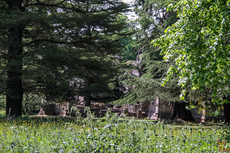 Dryburgh Abbey Scotland 3