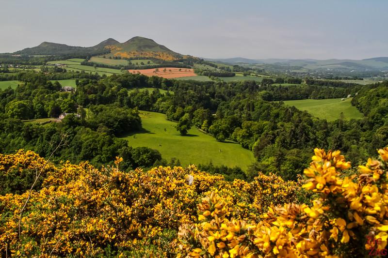 Scott's view Scotland 1