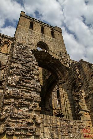 Jedburgh Abbey Scotland 7